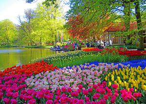 FIRST COMMUNITY BANK TO PREVIEW SPRINGTIME TULIP CRUISE IN HOLLAND, BELGIUM